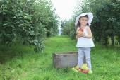 Schattig klein meisje van de peuter eten een appel op mooie herfstdag — Stockfoto
