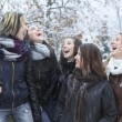 A Group of excited young girl friends outdoors in winter — Stock Photo #65382369