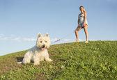 Retrato de hermosa niña manteniendo bastante blanco West Highland perro al aire libre — Foto de Stock