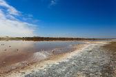 Ugab river mouth — Stock Photo