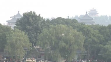 Beijing Skyline with Trees — Stock Video