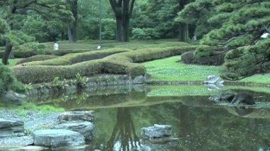 Imperial Garden in Tokyo Japan — Stockvideo