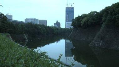 Imperial Garden in Tokyo Japan — Stock Video