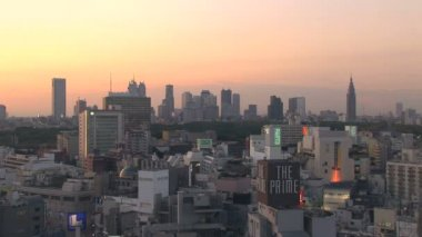 Downtown Tokyo Skyline at Sunset — Stock Video