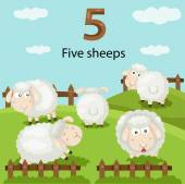 Illustrator of number five sheeps — Stock Vector
