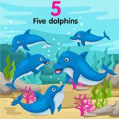 Illustrator of number five dolphins — Vecteur