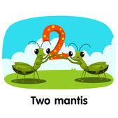 Illustrator of number two mantis — Stockvector