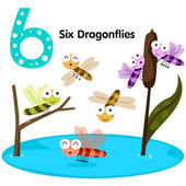 Illustrator of number six dragonfly — Vector de stock