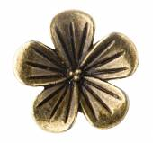 Bronze flowers isolated on white background — ストック写真