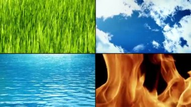 Elements Of LifeElements Of Life — Stock Video