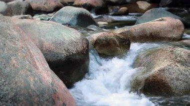 River Rocks — Stock Video