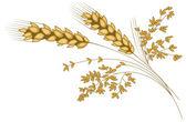 Stylized ear of wheat — Stock Vector