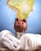 Brown piggy and lightbulbs — Stock Photo