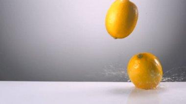 Whole lemons falling on water — Stock Video