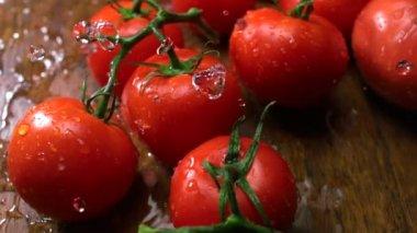 Tomatoes and water splash — Stock Video