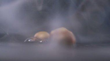 Popcorn kernel exploding — Stock Video