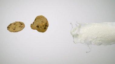 Milk splash and cookie — Stock Video