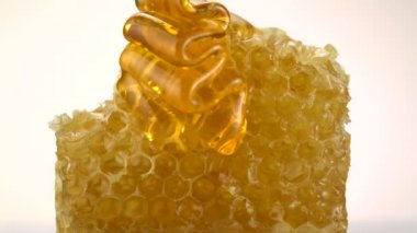 Pouring honey on honeycomb — Stock Video
