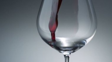 Pouring red wine into glass — Stock Video