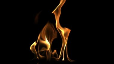 Close up of fire flame — Vídeo de stock