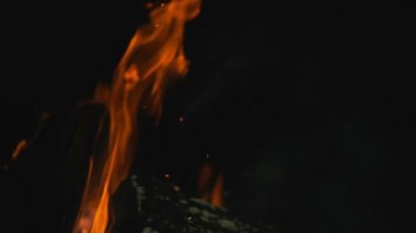Burning logs in fire pit — Stock Video