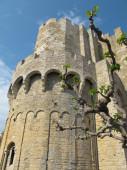 Europe castle — Stockfoto