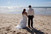 Wedding love — Fotografia Stock