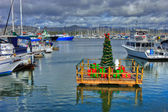 Christmas in the Harbor — Стоковое фото