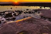 Frieri exponeras av tidvattnet — Stockfoto