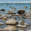 Balanced in the tide pools — Stock Photo #73465901