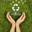 Concept protect nature,recycle. — Stock Photo #61325805