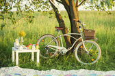 Bicycle with picnic set in summer day — Stock Photo