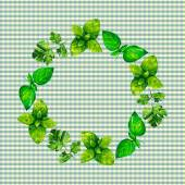 Watercolor illustration herb wreath on vichy pattern background — Foto de Stock