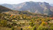Beautiful autumn trees and a mountain — Stock Photo