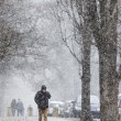 Snowstorm man park — Stock Photo #68100697