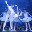 Swan lake ballet — Stock Photo #70733697