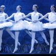Swan lake ballet — Stock Photo #70733711