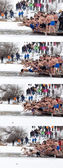 Epiphany day cold water jump photo collage — Stock Photo