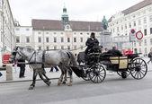 Horse drawn carriage Michaelerplatz — Stock Photo