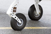 Tires of a small propeller airplane — Stock Photo