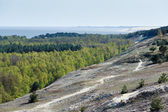 The Curonian Spit at spring time — Foto de Stock