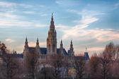 City Hall of Vienna — Stock Photo