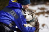Happy man with a husky — Stockfoto