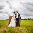 Bride and groom near hay — Stock Photo #63132227