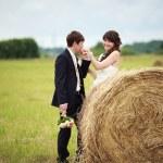 Bride and groom near hay — Stock Photo #63132257