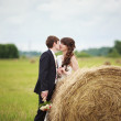 Bride and groom near hay — Stock Photo #63132291