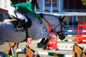Annual show jumping tournament CSI 4 in Chernyahovsk — Stock Photo