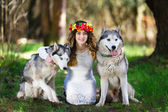 Husky and the girl — Stockfoto