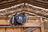 Leather saddle horse — Stock Photo