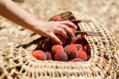 Basket with peaches — Stock Photo